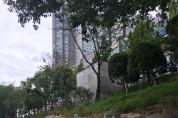 생태하천과-성남시는 지난 6월 급경사지이던 정자동 신기교 지점 탄천 진출입로를 완만하게 개선 공사했다.jpg