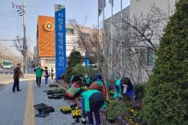 평택시 서정동, 새봄맞이 봄꽃 심기