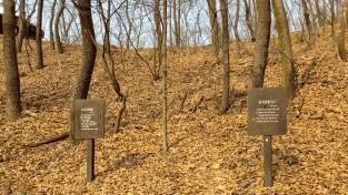 사라지지 않는 '친일'잔재